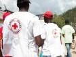iciHaiti - Humanitarian : The IFRC helps the Haitian Red Cross