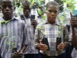 Haiti - Environment : Soon start of the reforestation project through schools