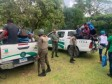 Haiti - DR : Haitians loot the forest Natural Park «Los Haitises»
