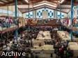 iciHaïti - Dajabón : Afflux important d'haïtiens au marché binational