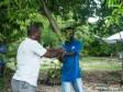 iciHaïti - Nippes : Distribution d'arbres et d'intrants agricoles