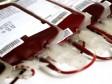 iciHaiti - Earthquake : Call for blood donation