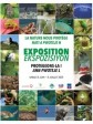 iciHaiti - Exhibition : «Nature protects us, let's protect it»