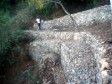 Haiti - Environment : Protection of the Ravine Fond Diable
