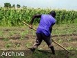 Haiti - Agriculture : 94 young graduates in agricultural techniques