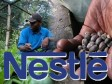 Haiti - Agriculture : Improvement of income and opportunities in the coffee sector