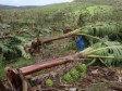 Haiti - Agriculture : $242 million damage...