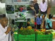 Haiti - Agriculture : Launch of the debate on the agricultural recovery to Furcy
