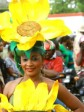 Haiti - Carnival of Flowers 2013 : Review of the first day